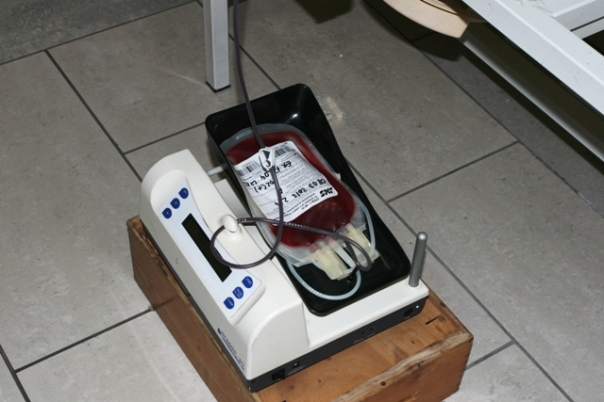 TREBINJE - Gimnazijalci dali krv