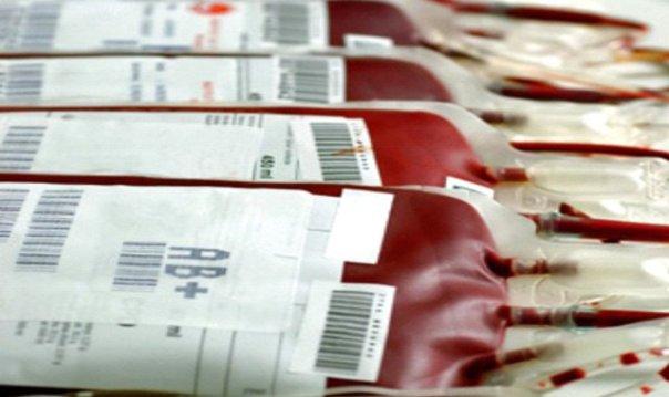 radnici novoteksa i neimarstva dali krv